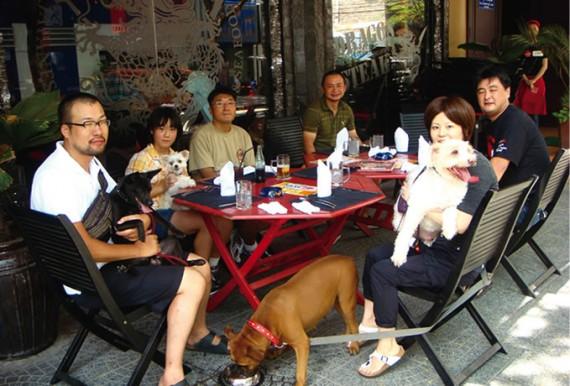 ホーチミン犬家族