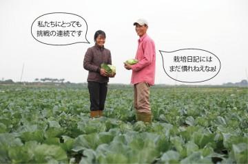 安全野菜の産地 ヴァンドゥック村