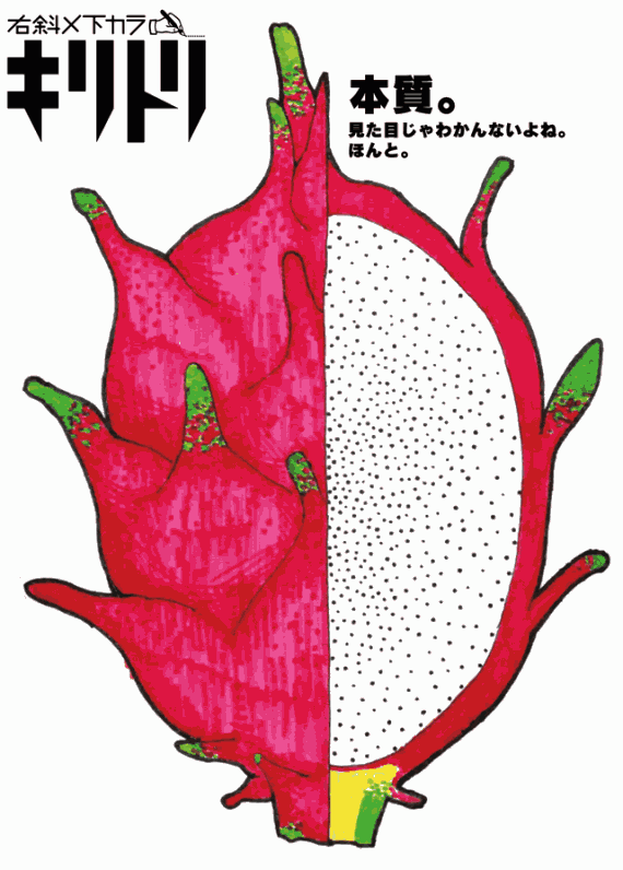 No.001 Dragon Fruit