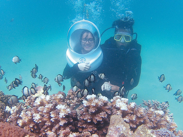 Holiday Diving4
