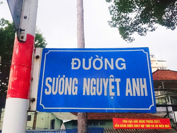 Suong Nguyet Anh 1